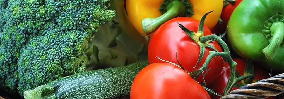 Frisches Obst und GemüseFrisches Obst und Gemüse werden das ganze Jahr über vom Körper benötigt und sind sehr gesund.