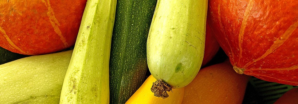 Obst und Gemüse sind die Quelle des gesunden Lebens.Die tägliche Aufnahme von Nährstoffen, wie Ballaststoffe, Vitamine und Enzyme sichert Ihnen Gesundheit und Wohlbefinden ein Leben lang.